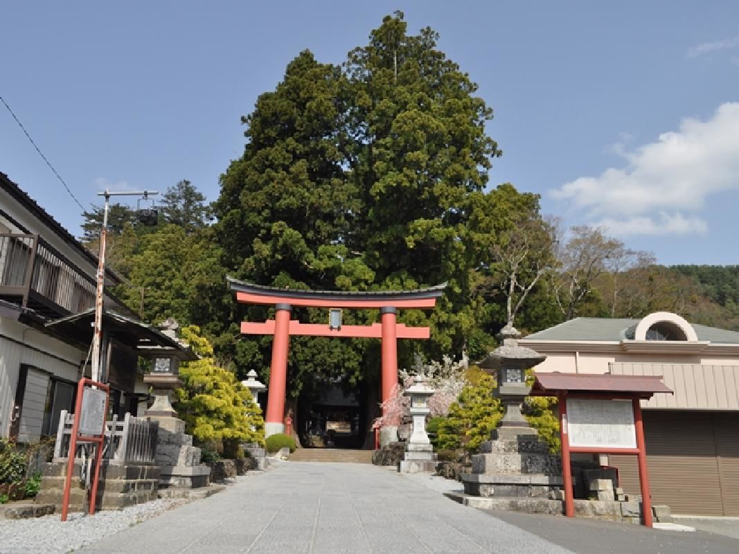 Guided Nature Walk to with Mt. Fuji View and Historic Shrine near Lake Kawaguchi