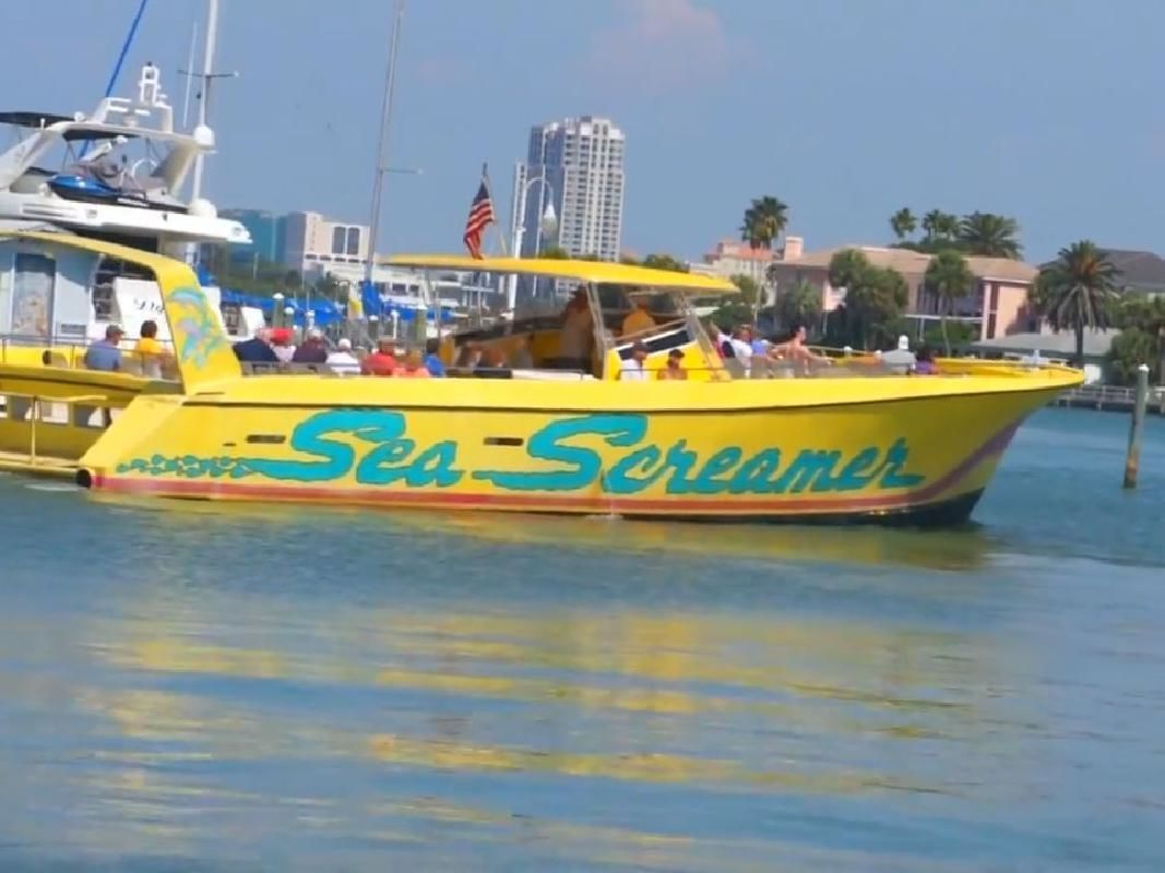 """The """"Sea Screamer"""" Speedboat Adventure & Self-Guided Sightseeing Tour"""