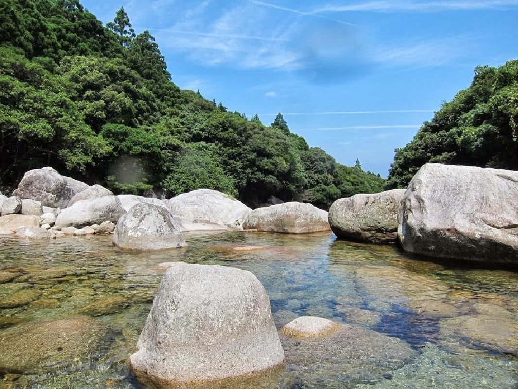 Yakushima Island Sightseeing Tour with English Guide and Lunch