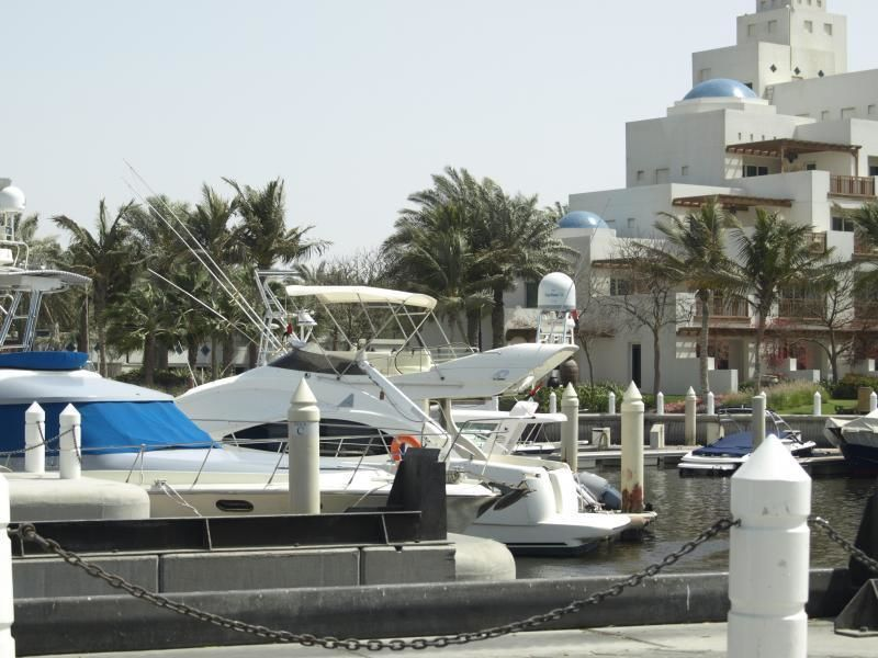 Dubai: Individual tour with private Emirate expert