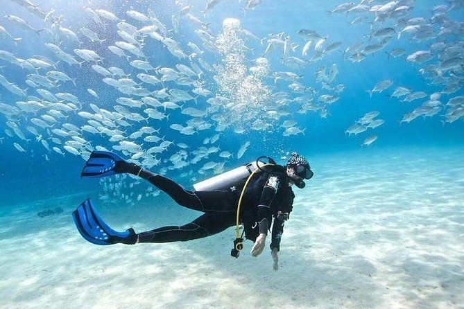 Scuba Diving Full Day Boat Trip for beginners – Hurghada