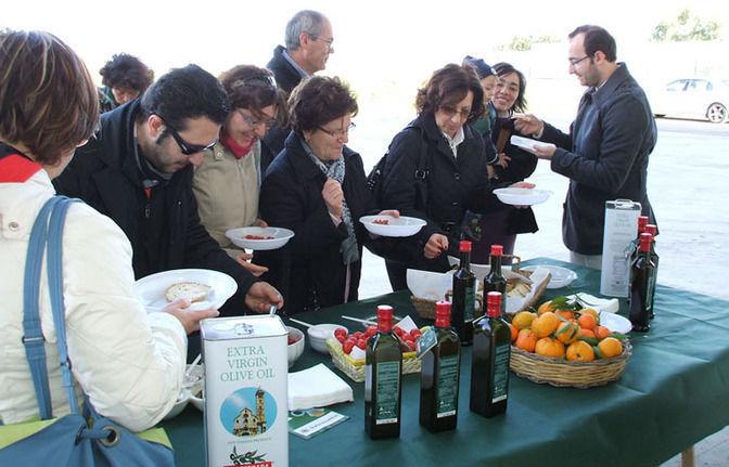 Apulia: 1-hour extra virgin olive oil tasting