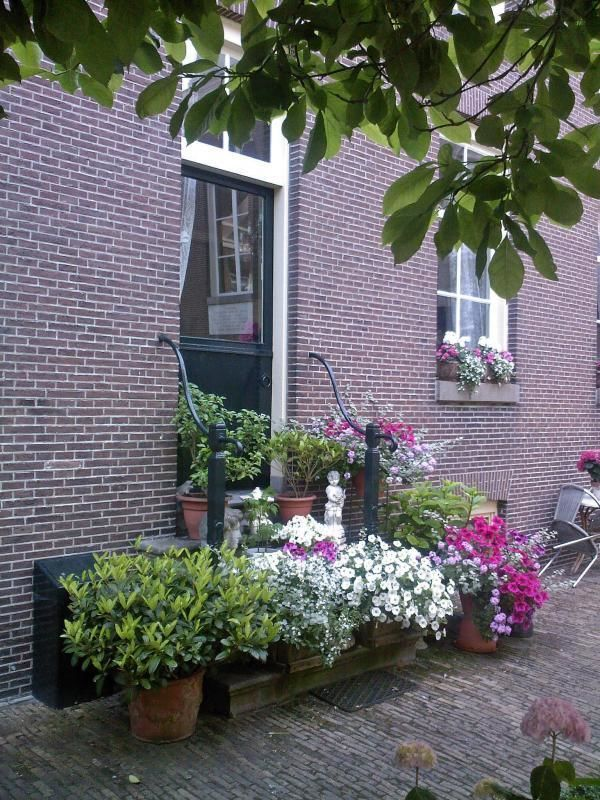 City tour Amsterdam - Jordaan Quarter