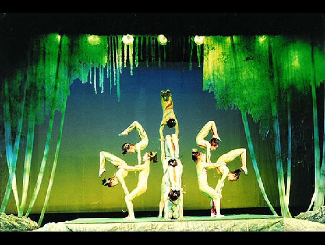 Chinese Acrobats and Shanghai Private Evening Tour with Hotel Pick-up