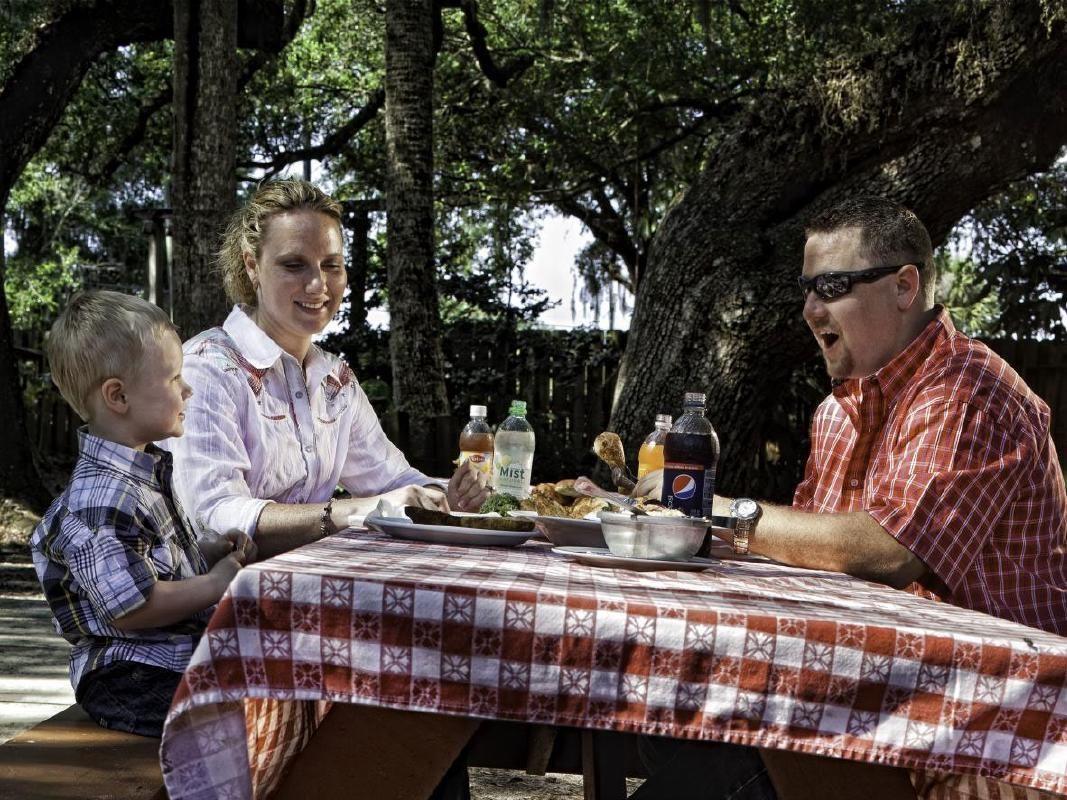 Authentic Western BBQ Dinner, Wildlife Hayride & Rodeo Adventure
