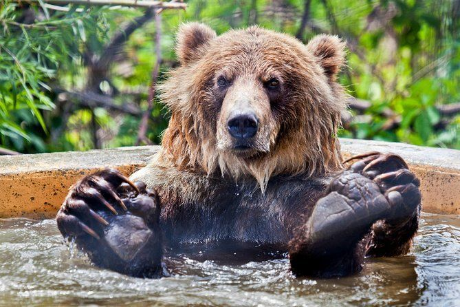 Skip the Line: Kamloops BC Wildlife Park Admission Ticket