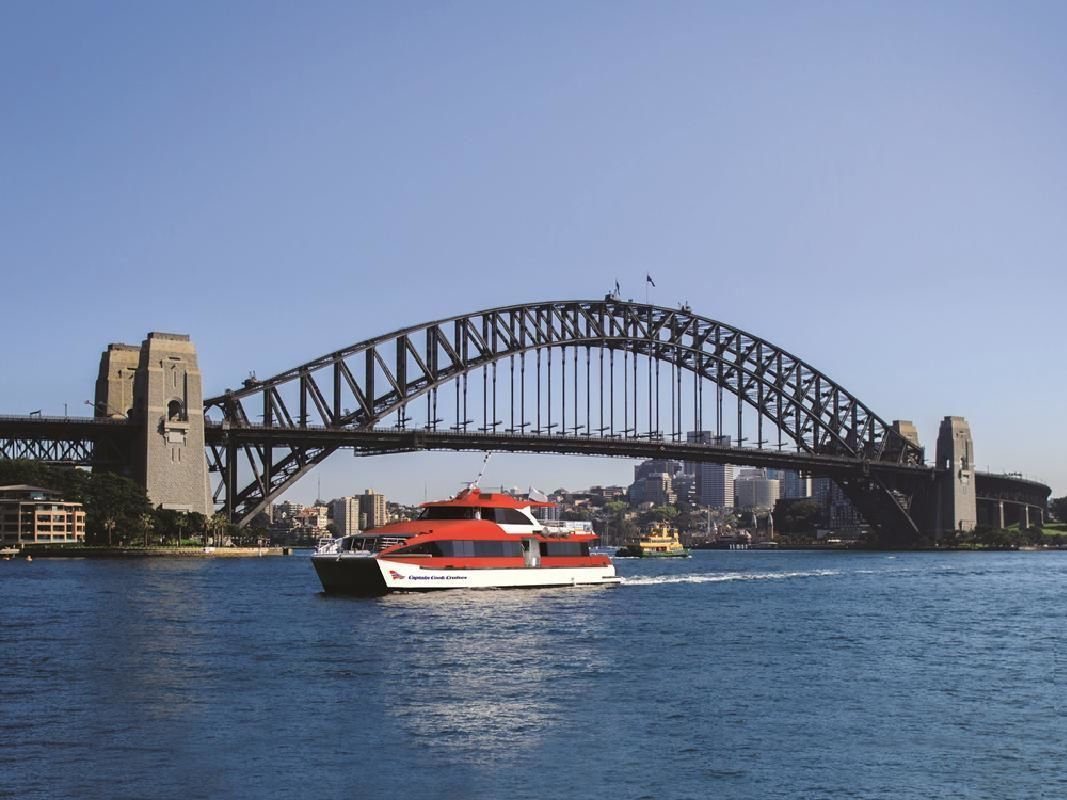 Open Water Whale Watching Cruise from Sydney Harbour