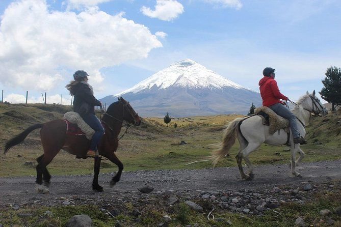 Cotopaxi National Park Horseback Ride Private Excursion