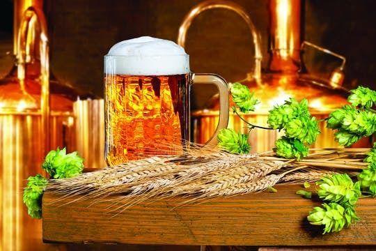 Beer Tasting at the De Hemmel Brewery