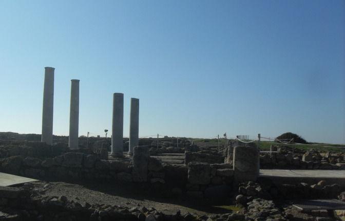 Archaeology tour - Nora, the roman excavation site