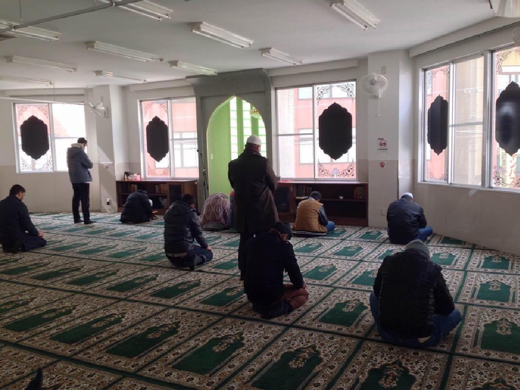 1-Day Muslim-Friendly Walking Tour of Osaka with Osaka Castle and Dotonbori