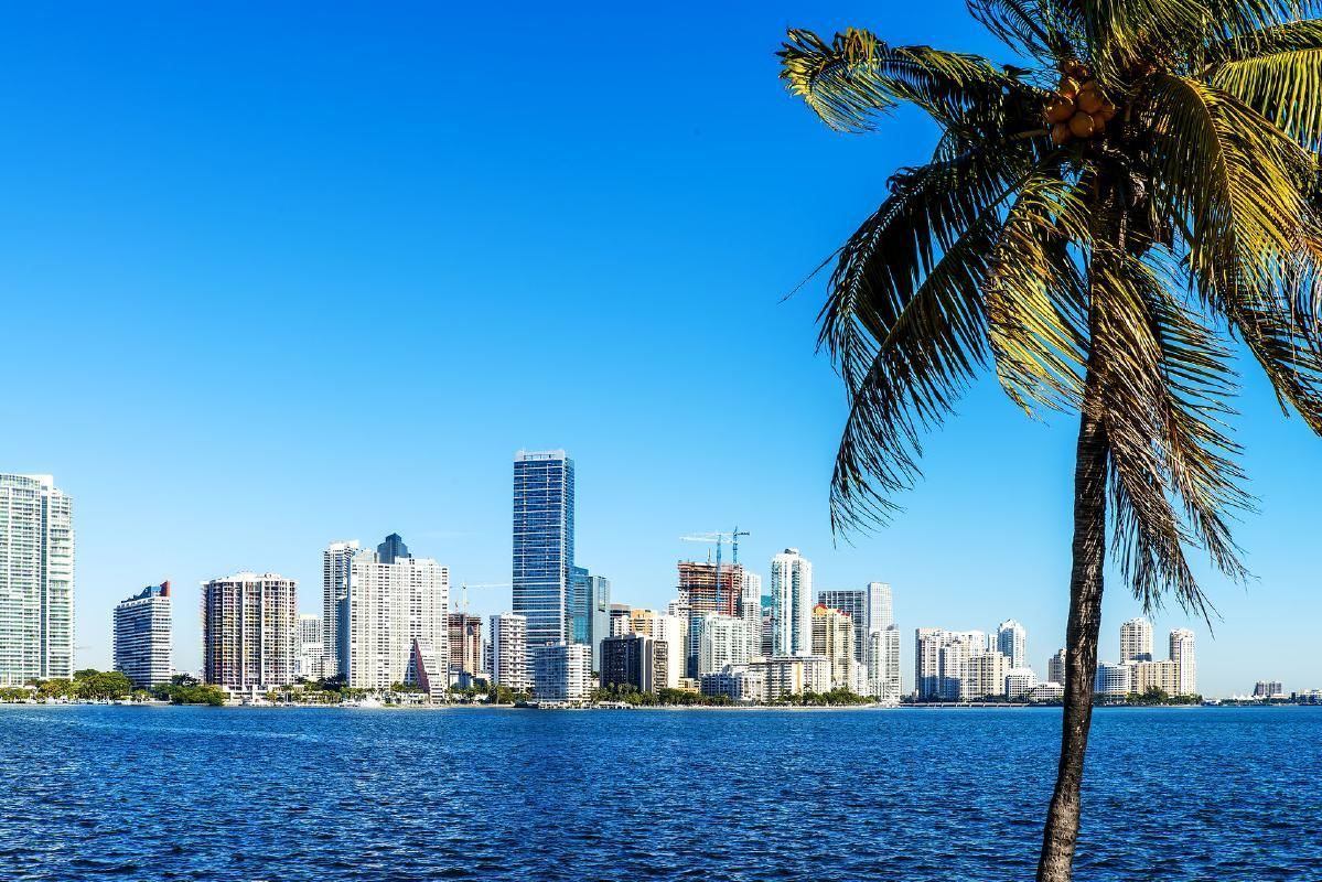 Miami Sightseeing Bus Tour with Everglades Airboat Ride and Wildlife Show
