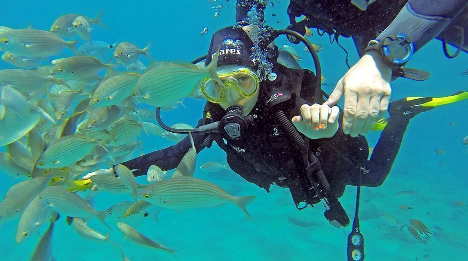 Gran Canaria: Discover Scuba Diving Beginner Program