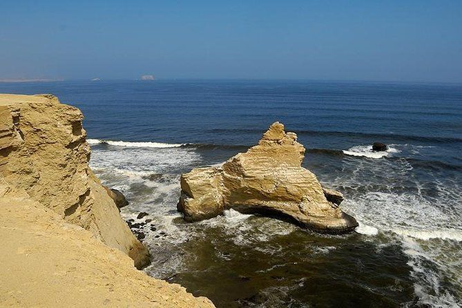 Half-Day Tour of Paracas National Reserve from San Martin Port
