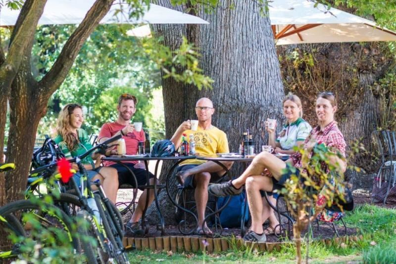 Bicycle tour along the historic Cape Wine Route