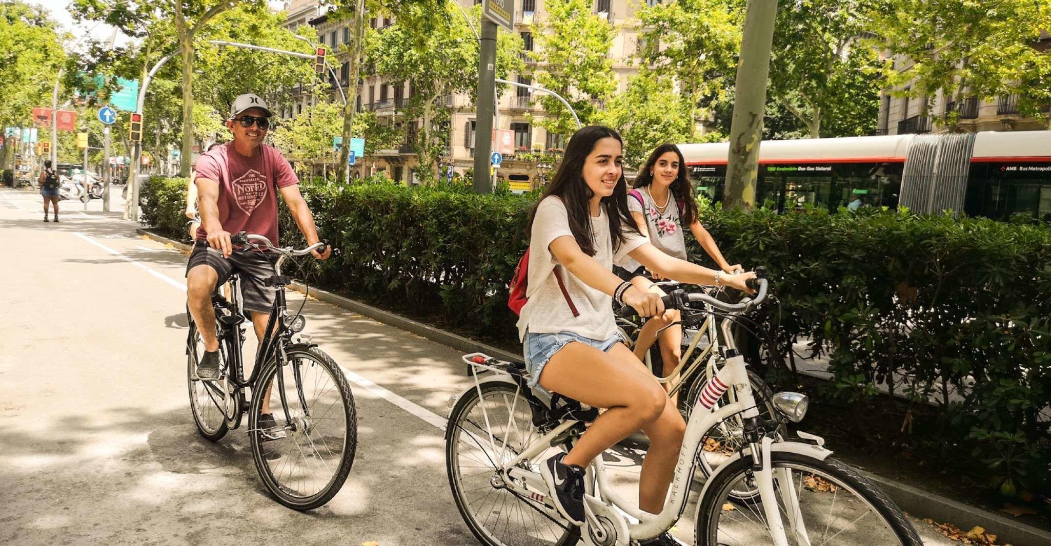 Barcelona: Highlights and Gaudi Private Bike Tour