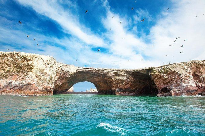 Ballestas and Paracas from Lima by bus