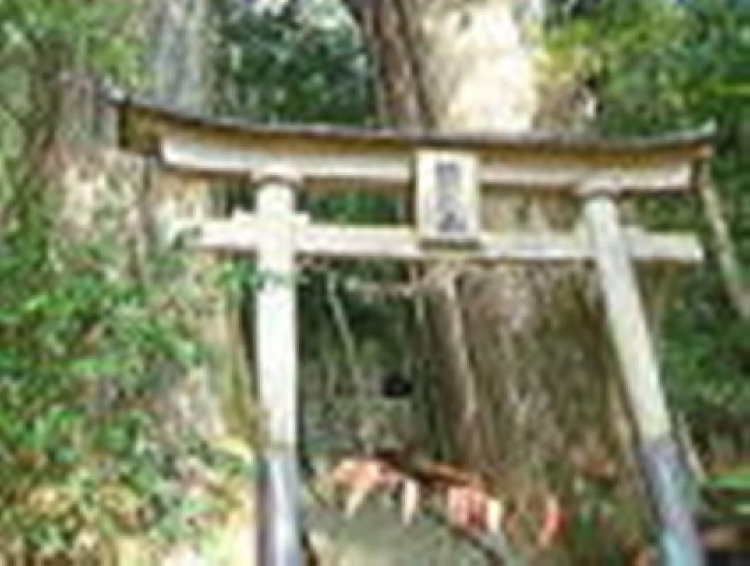 Full Day Charter Taxi Kumano Hongu Taisha Shrine Area Tour from Shirahama