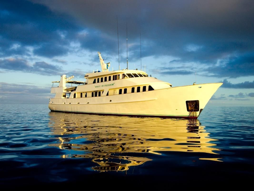 Great Barrier Reef Certified Diving Tour with Snorkeling from Cairns