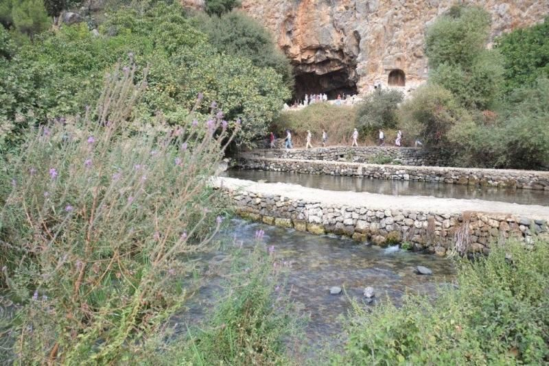 Guided tour through the nature reserve Tel Dan