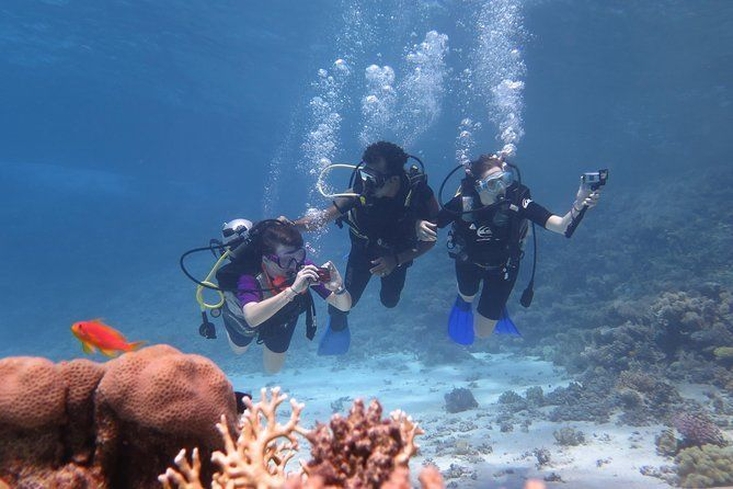 Daily 2 Dives with Equipment from Hurghada