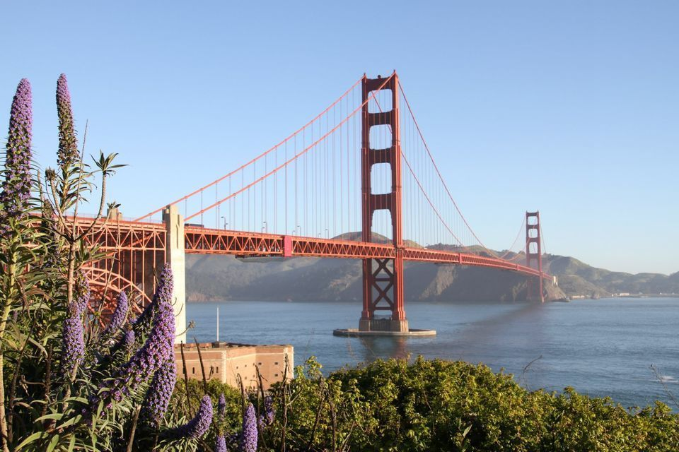 Monterey and Carmel Day Tour & Golden Gate Bay Cruise
