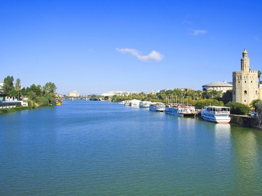 Seville Highlights Walking Tour w/ Cathedral, Royal Alcazar & Giralda Entrance