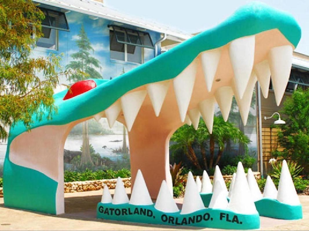 Gatorland Alligator Theme Park & Zipline Adventure Combo
