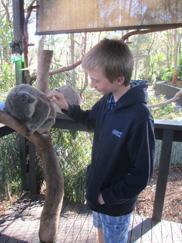 Experience Australia - Animals & Culture