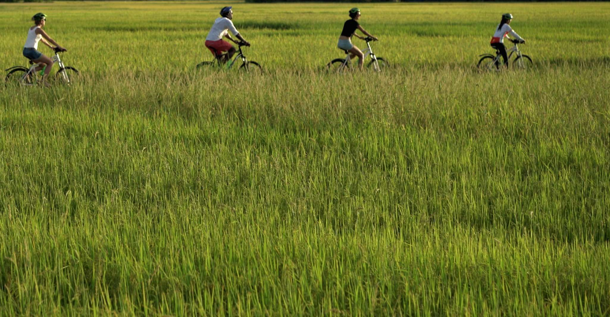 Hoi An: Morning Countryside Tour by Bike