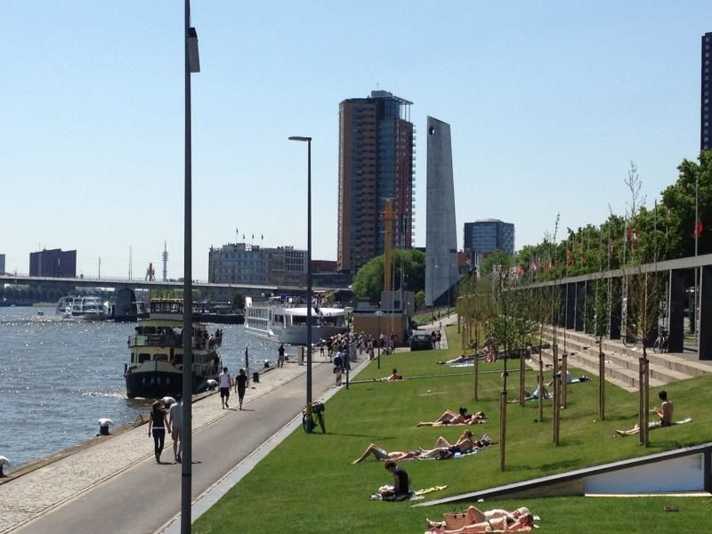 City tour Rotterdam centre