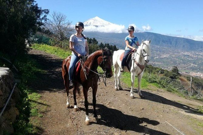 Horse riding in Puerto de la Cruz, Tenerife