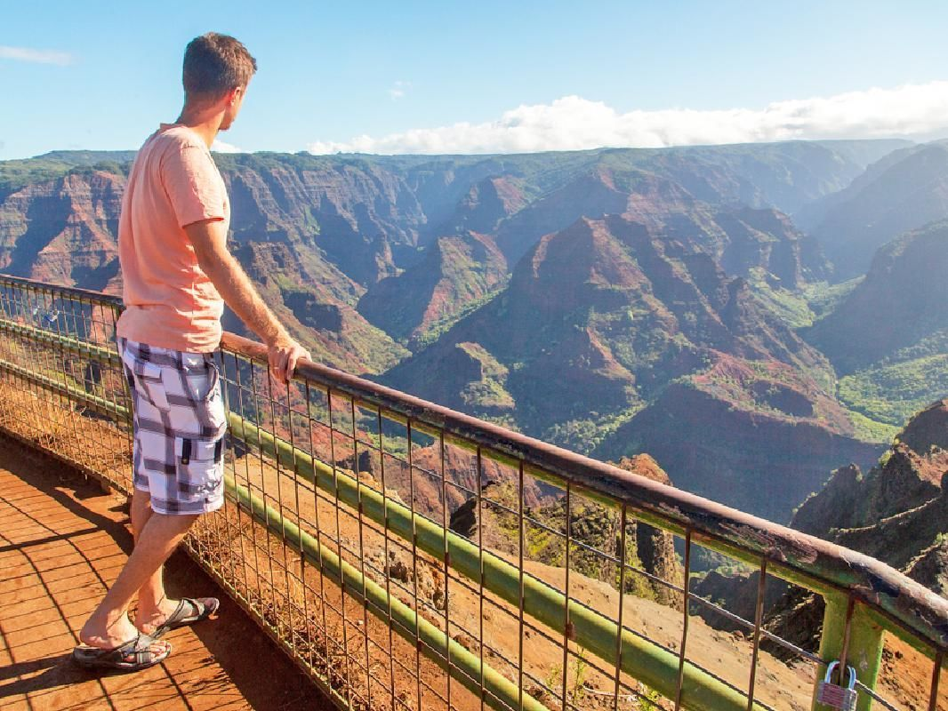 Best of Kauai Private Island Tour with Expert Guide
