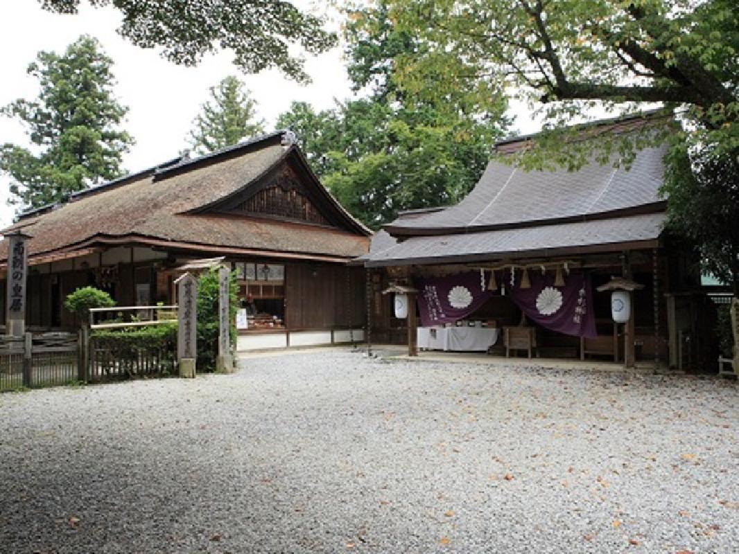 Nara Mt. Yoshino Cherry Blossom Viewing Tour from Osaka