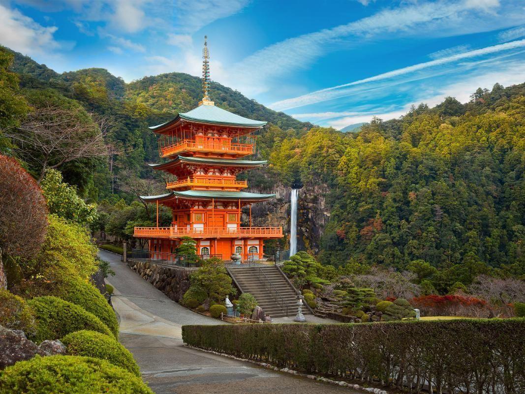 Kumano-Kodo Walking Tour with Daimon-Zaka, Nachi Taisha Shrine and Nachi Falls