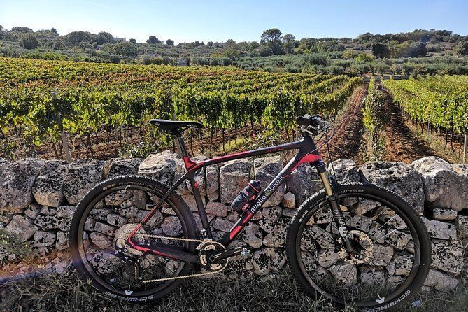 Bike ride in the Apulian Aqueduct Cycle Route