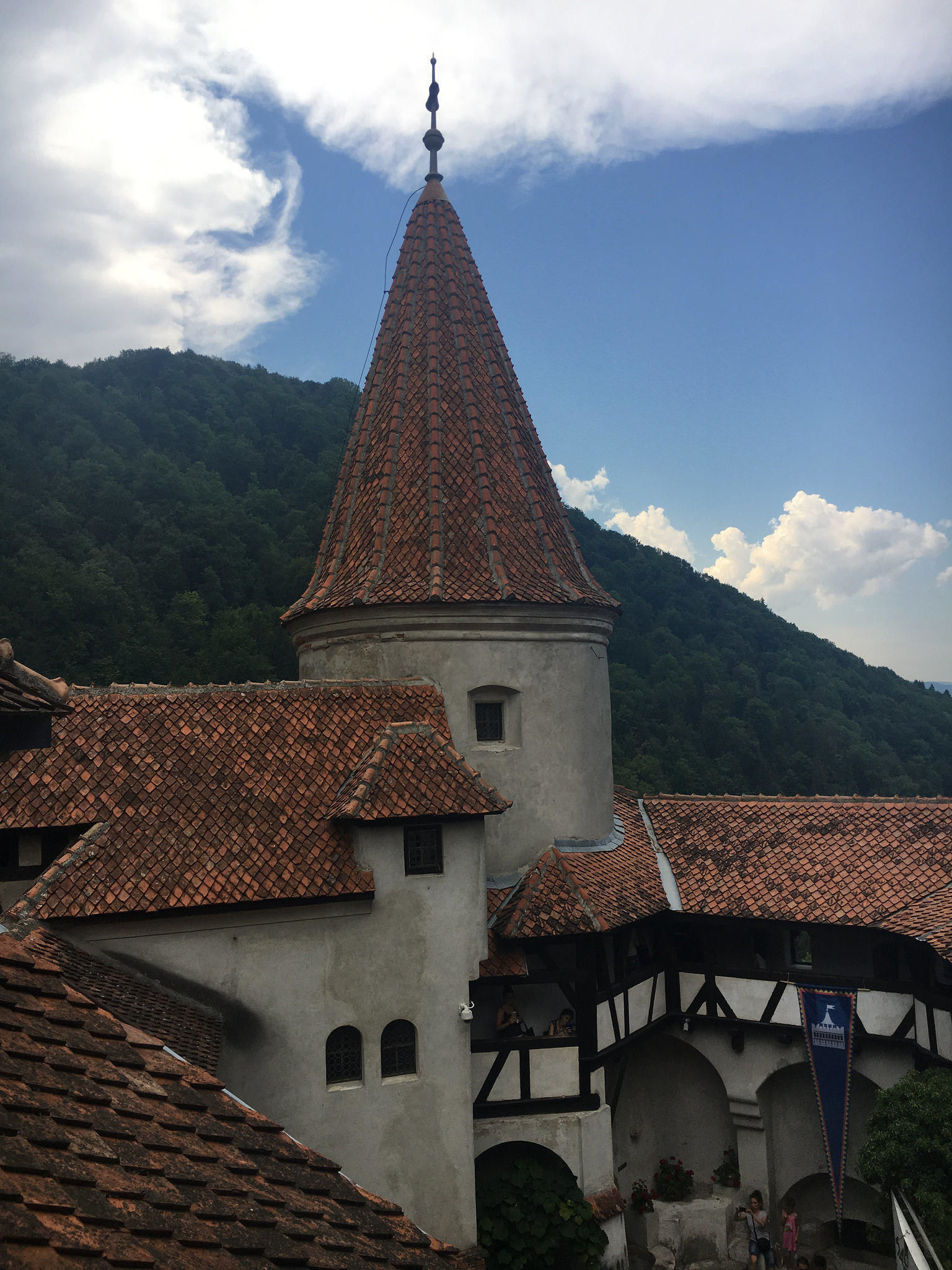 Full-Day Private Tour from Bucharest to Transylvania: Sinaia Castle, Dracula's Castle, Rasnov Fortress, Dino Park and Valea Cetatii Cave