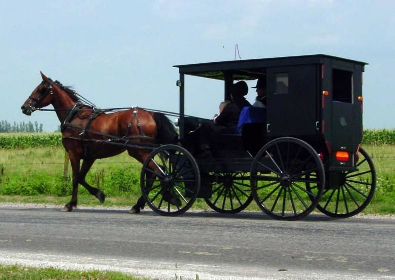 2 Day Excursion to Washington DC, Philadelphia & The Amish Country