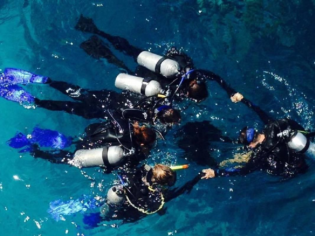 Seaquest Introductory Diving Adventure in the Great Barrier Reef from Cairns