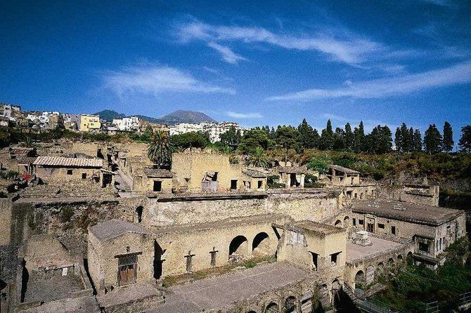 Half-Day Herculaneum Coach Tour