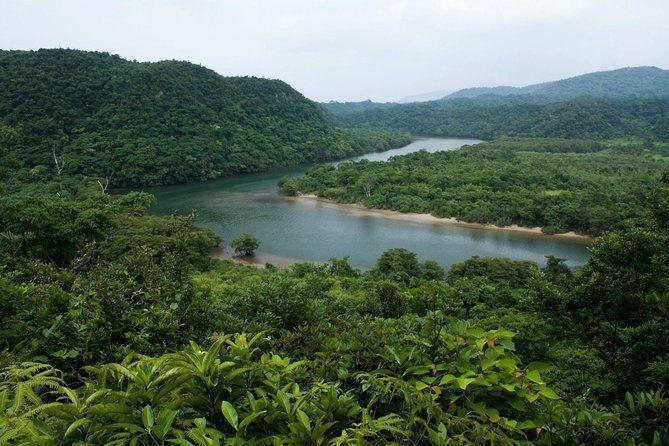 Iriomote Island & Yubu Island Adventure Tour from Ishigaki