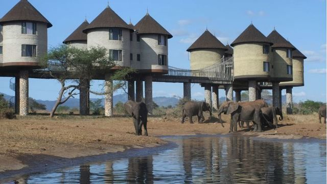 Wildlife & Beach Holiday, Kenya