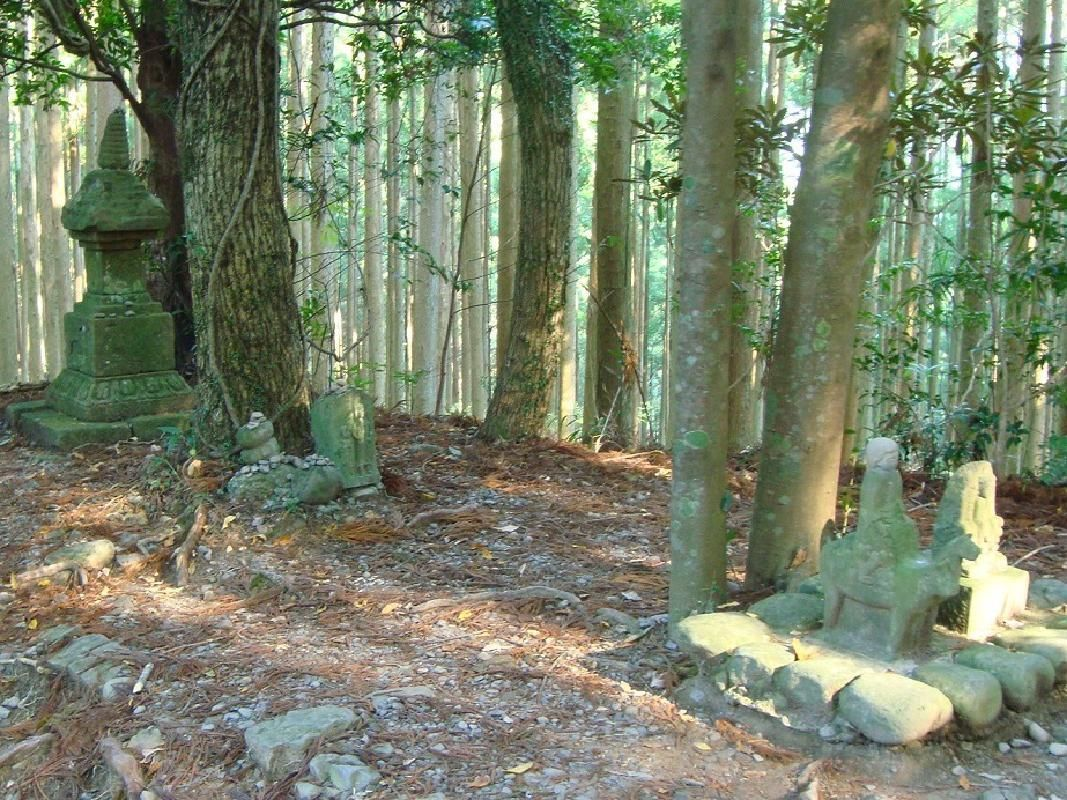 Full-Day Sightseeing Tour from Shirahama to Nara on Chartered Taxi