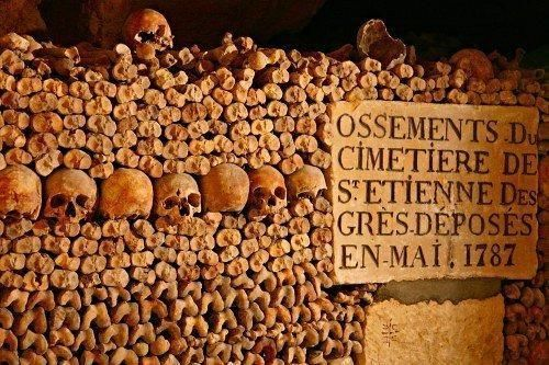 Skip the Line Private Paris Catacombs Tour