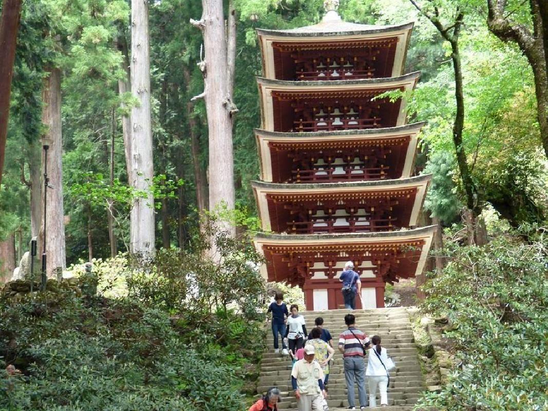 Morning Sightseeing Taxi Tour of Horyuji Temple and Traditional Nara