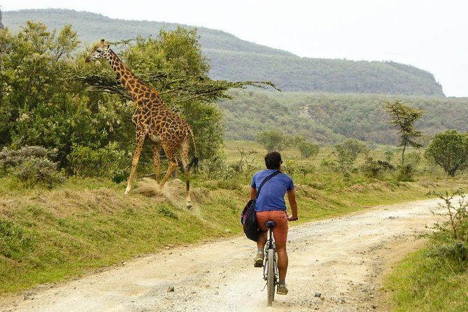 1 Day Hells gate and Lake Naivasha Tour From Nairobi