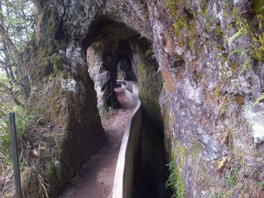 Madeira: Ribeiro Frio to Portela 4-Hour Guided Walk