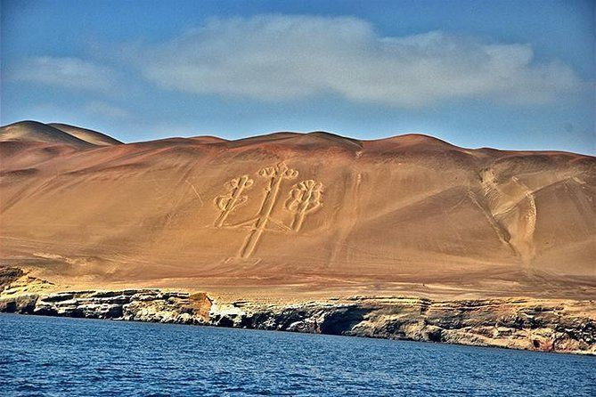 Ballestas Islands and Paracas Reserve from San Martin Port