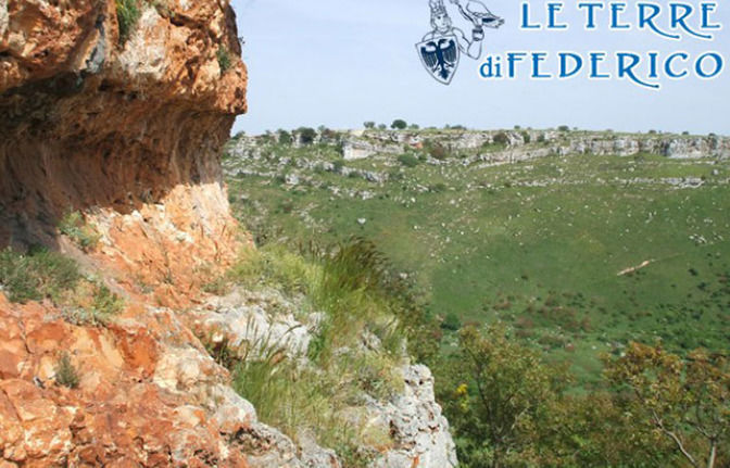 Alta Murgia National Park (Apulia): 3-Hour Trek with Local guide