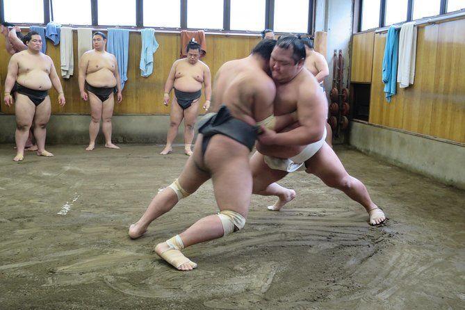 Tokyo Sumo Morning Practice Walking Tour